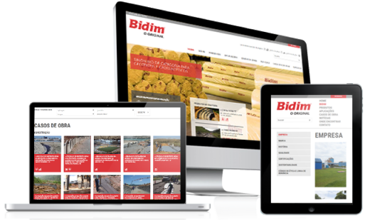 CRIAÇÃO DO SITE BIDIM  • desktop + responsive design
